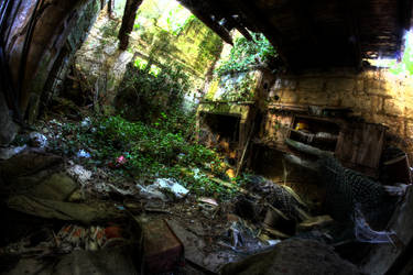 Overgrown by Deadcam