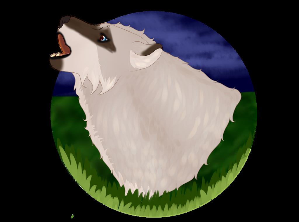 Dakaido's Profile Picture