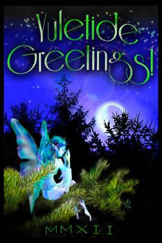 Holiday Card 2012 - SEL