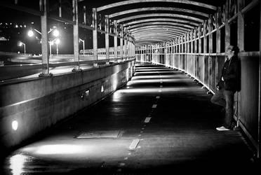 Hazel Bridge by 1