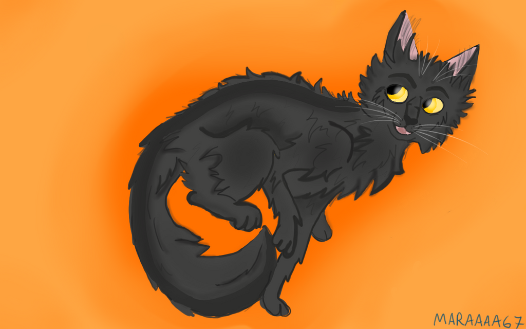 Graystripe by maraaaa67