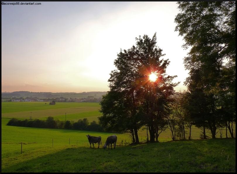 peaceful Allgaeu by acoresjo88