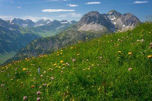 summer in the mountains II by acoresjo88
