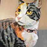 Meeka Portrait