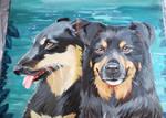 Lake Dogs