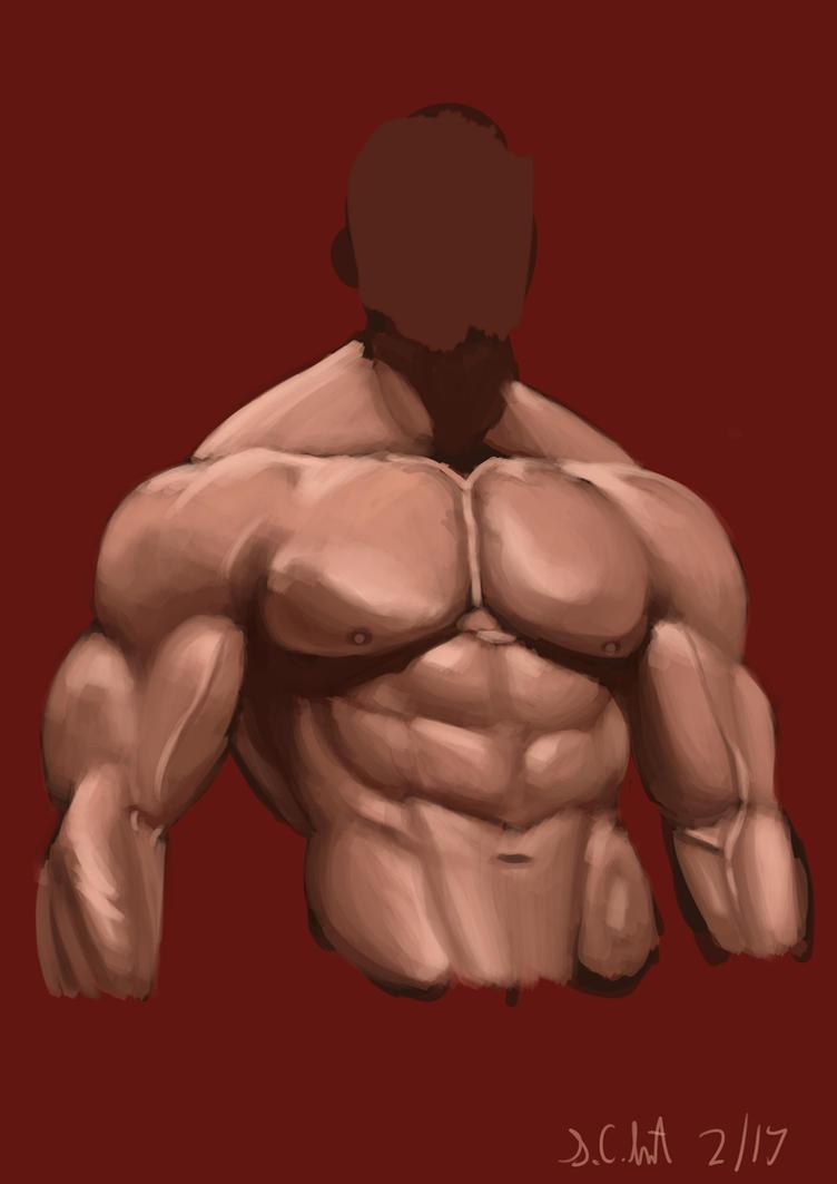 Muscles Photostudy by Samo94