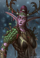 Warcraft Nelf Druid by Samo94