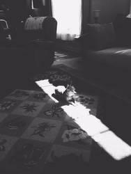 Lola by KnowLife