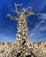 Bones by merzlak