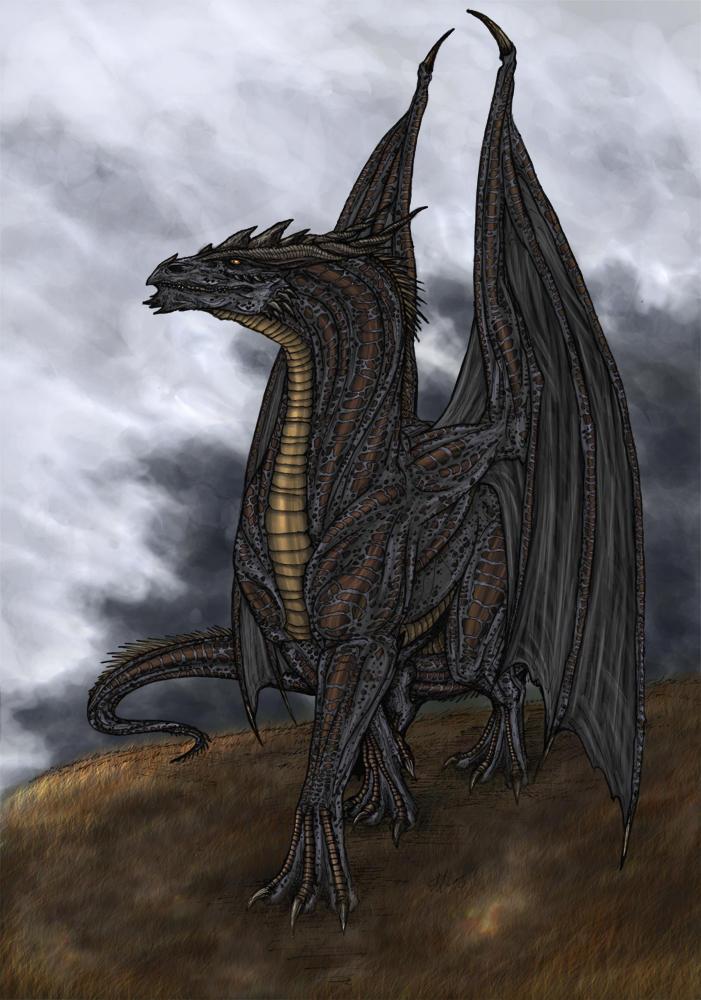 DarkSun, The Cryptic Mind Dark_Dragon_Contest_Winner_by_Black_Dragon_Club
