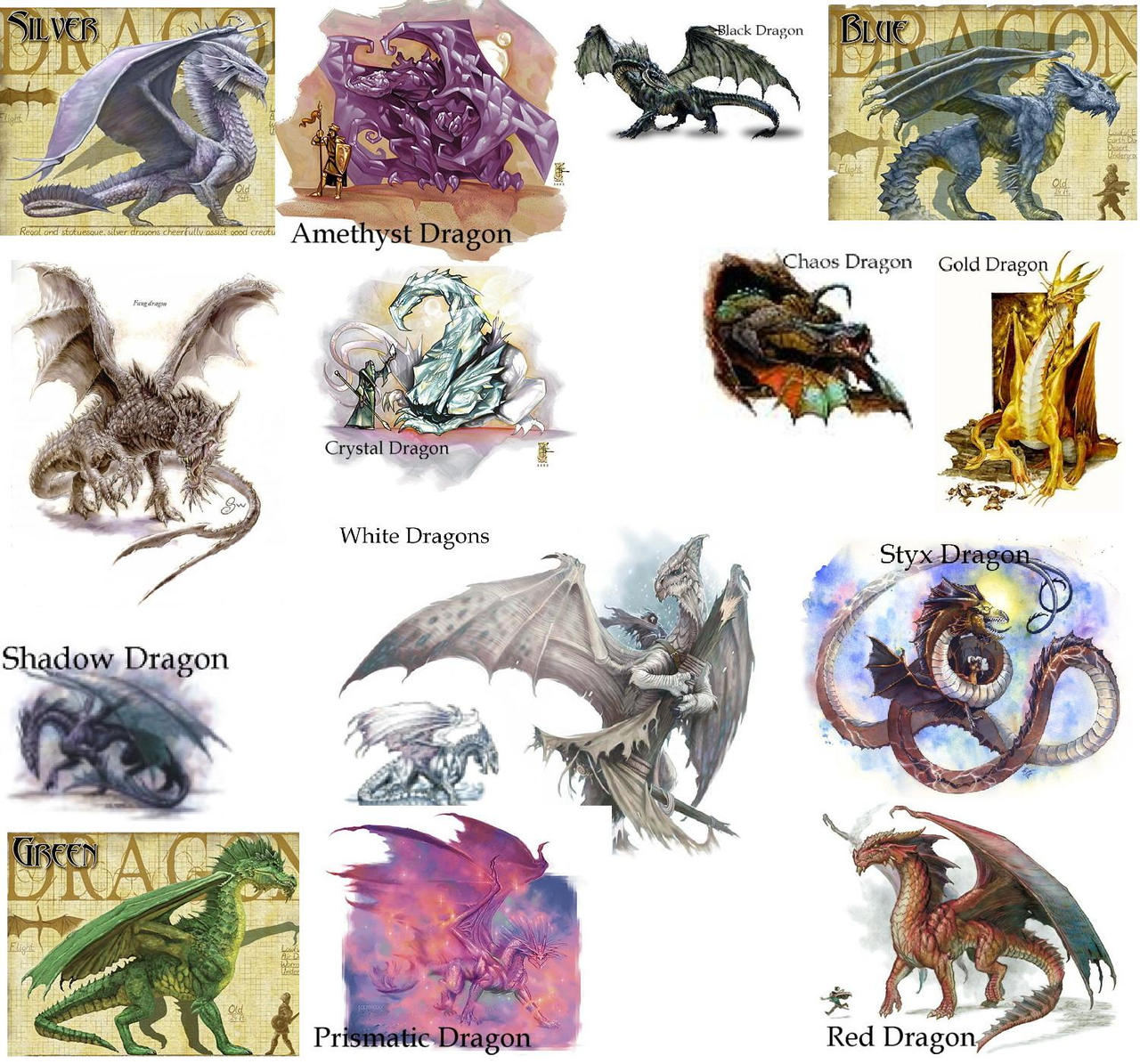 Classification dragon Exemples de Black-Dragon-Club