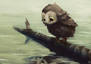 Lonely Owl by tranenlarm