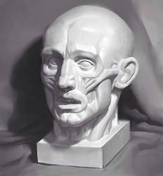 Ecorche head painting by Samarskiy