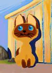 Kitten called Woof