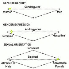 Gender and Sexuality Chart by Neko-Priestess