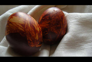 couple of eggs 4