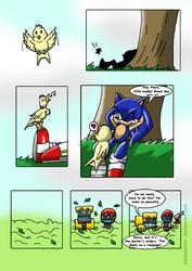 Sonic and the BirdStone chap1 P01