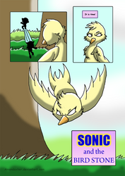 Sonic and the BirdStone chap1 P03