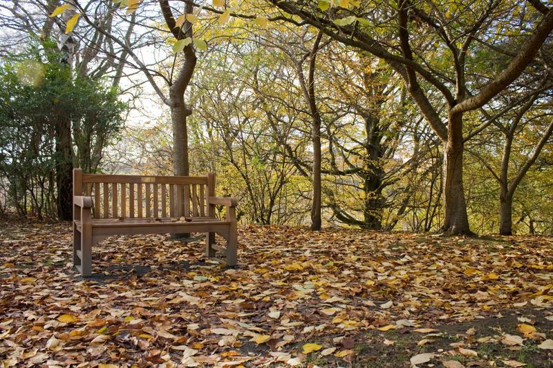Autumn - bench 001 by akio-stock
