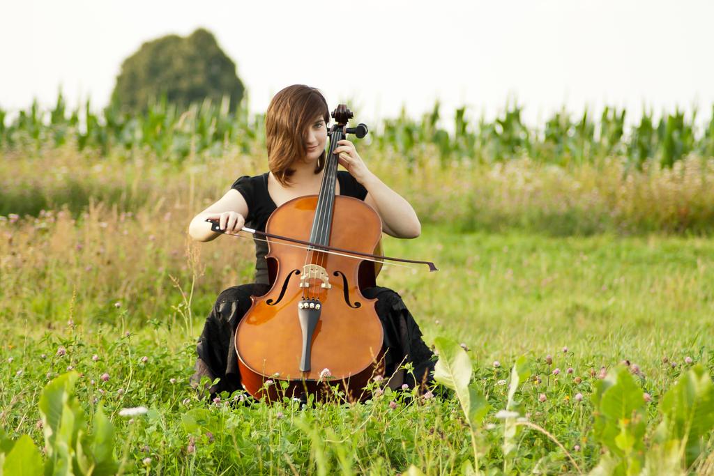 model - cello020 by akio-stock