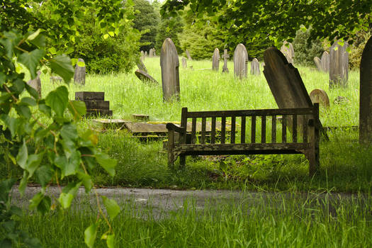 Graveyard_2014-06_0015