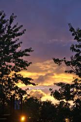 Sunset-tree 0034 by akio-stock