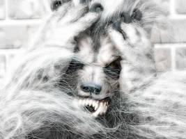 An Anguished Werewolf by bcbreakaway