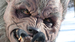 Close Up With the Werewolf