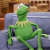 Kermit in a bad situation