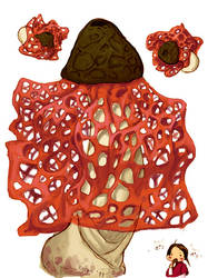 Stinkhorn by kecen