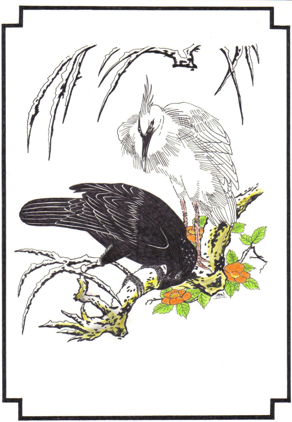 crow and stork black n white by grusom63 on deviantart. Black Bedroom Furniture Sets. Home Design Ideas