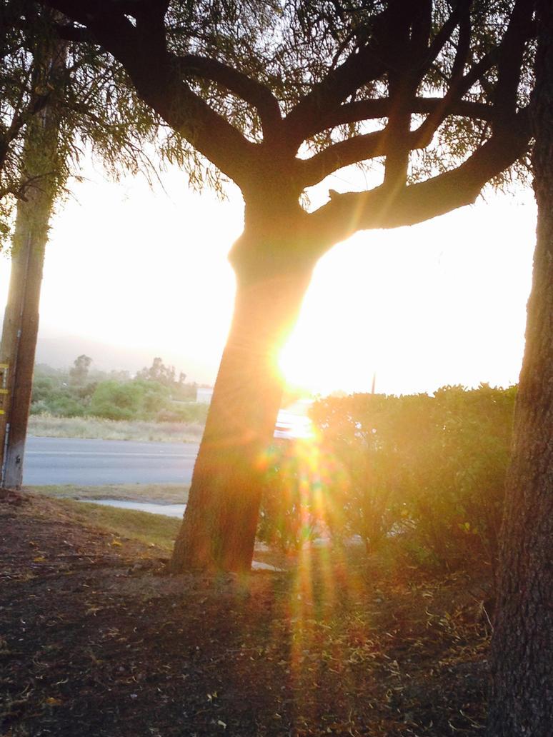 Shine of light by veeeester400