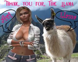 Llama TY 600 by AviGebal