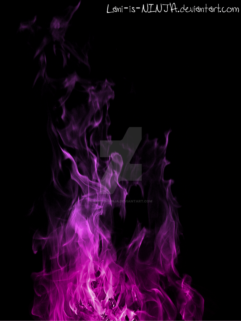 Purple Flames With Black Background By Lani-is-NINJA On