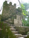 Lugubrum-stock castillo8