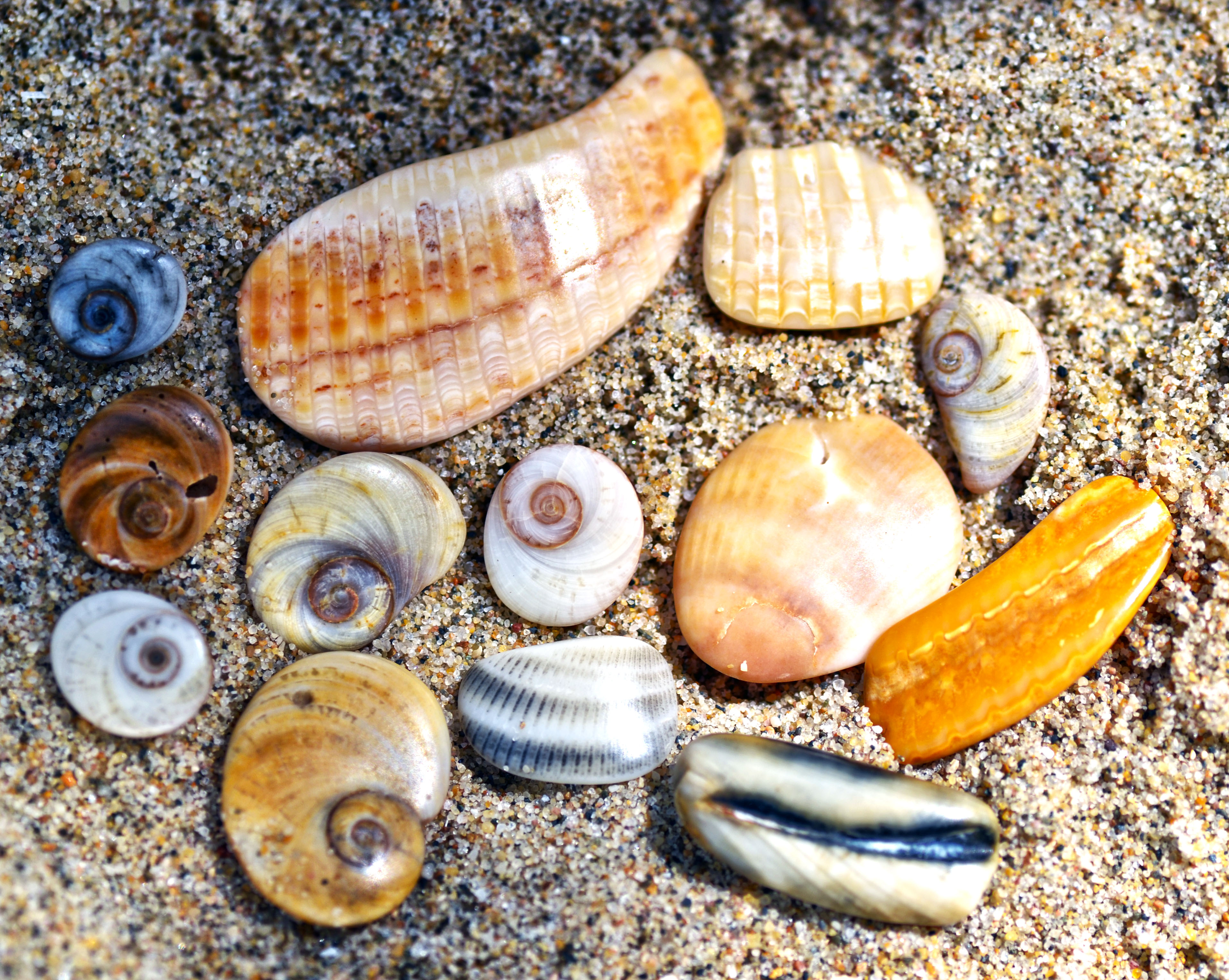 Une apres-midi a la plage by Aude-la-randonneuse