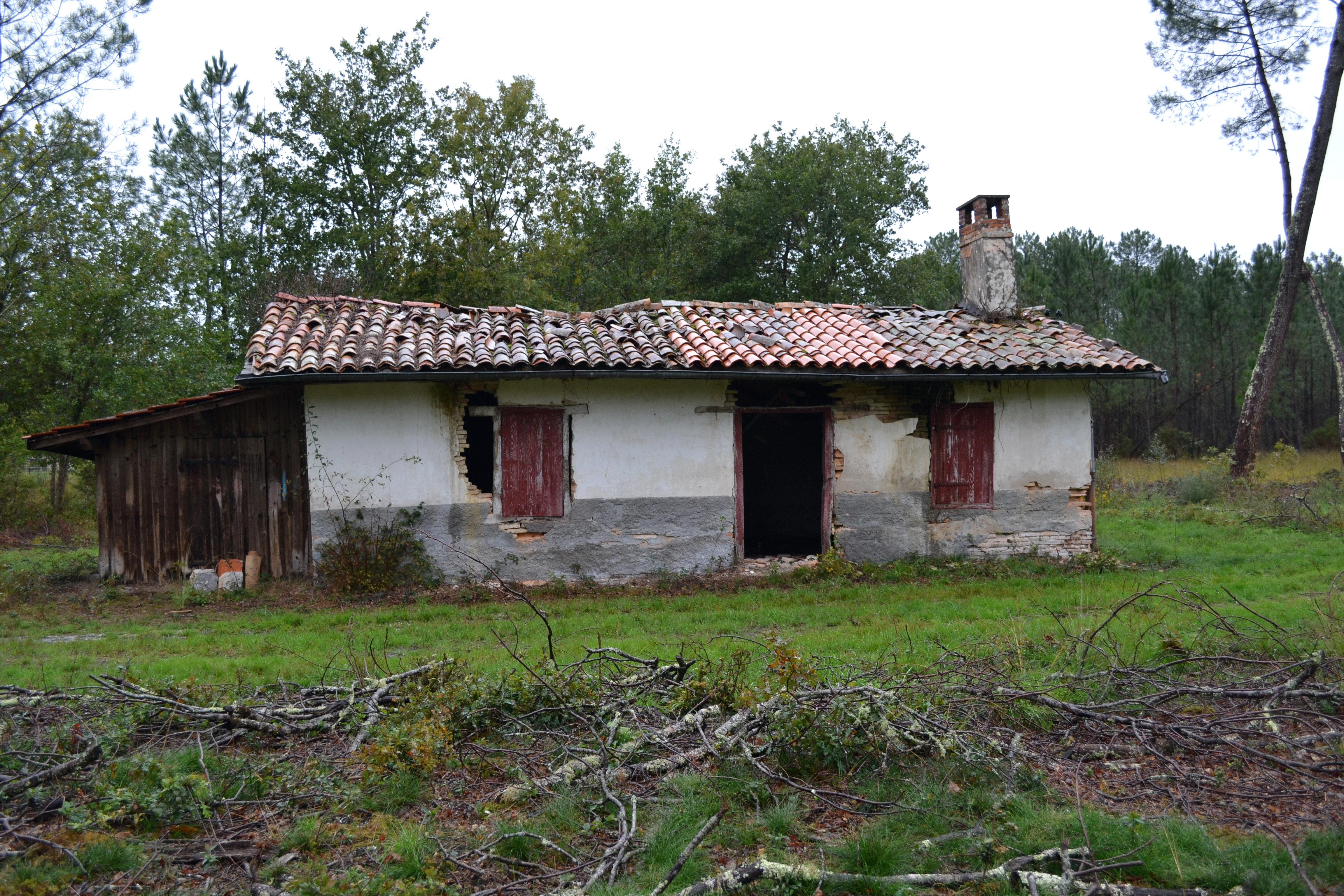 La maison dans les bois by aude la randonneuse on deviantart for Asticots dans la maison