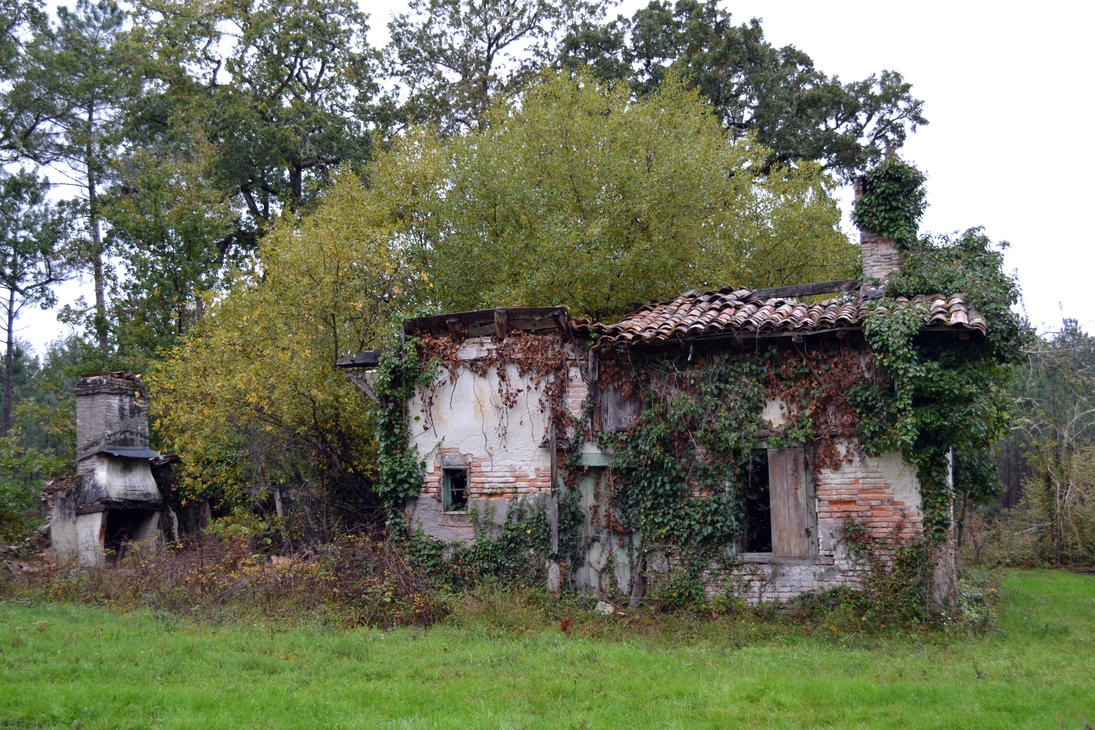 Haus of Fungi by Aude-la-randonneuse