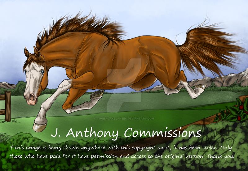 AgentDarkHorse Commission FIN by TimberlakeLaneEC