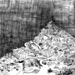 One Rat's Story I