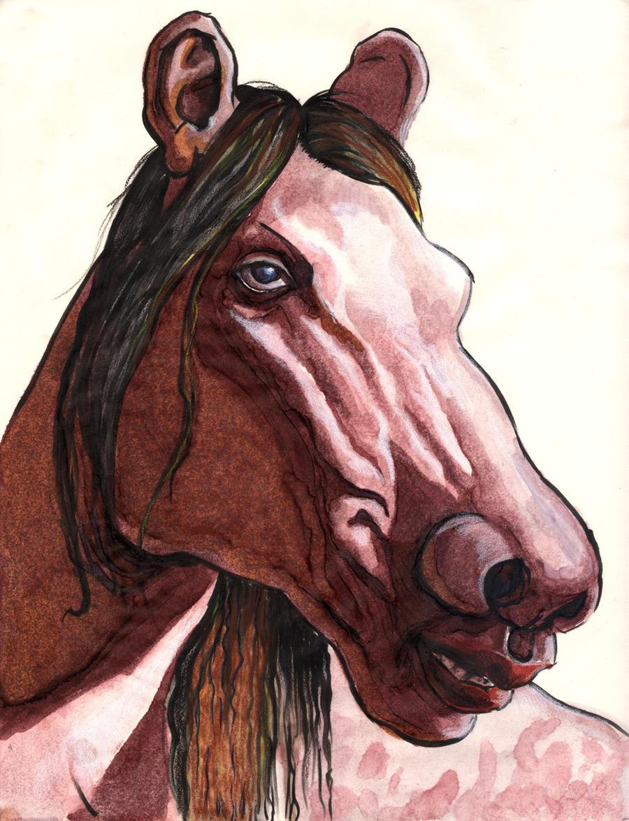 Centaur Head by poopbear