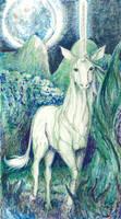 Unicorn At Night by tunacarp