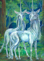 Pair of Unicorns by tunacarp
