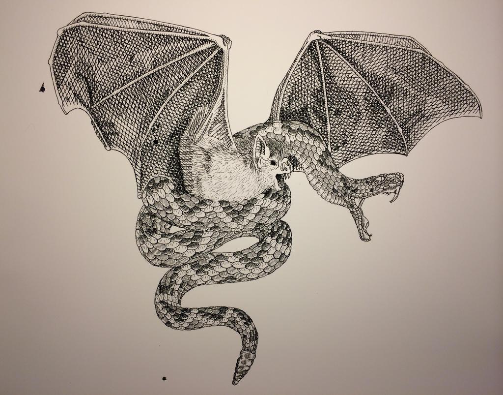 Snake and Bat Harmony