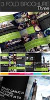 3 Fold Brochure III by CarlosViloria