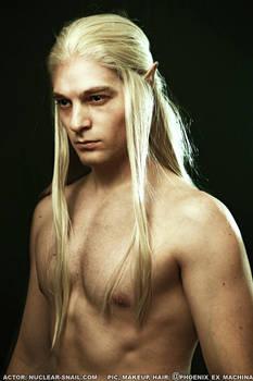 Elf (or witcher?) :D