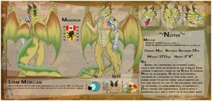 Fursona Reference Sheet by Ceowolf