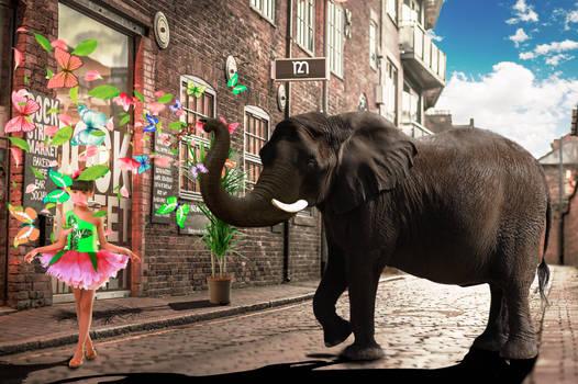 the fantasy elephant