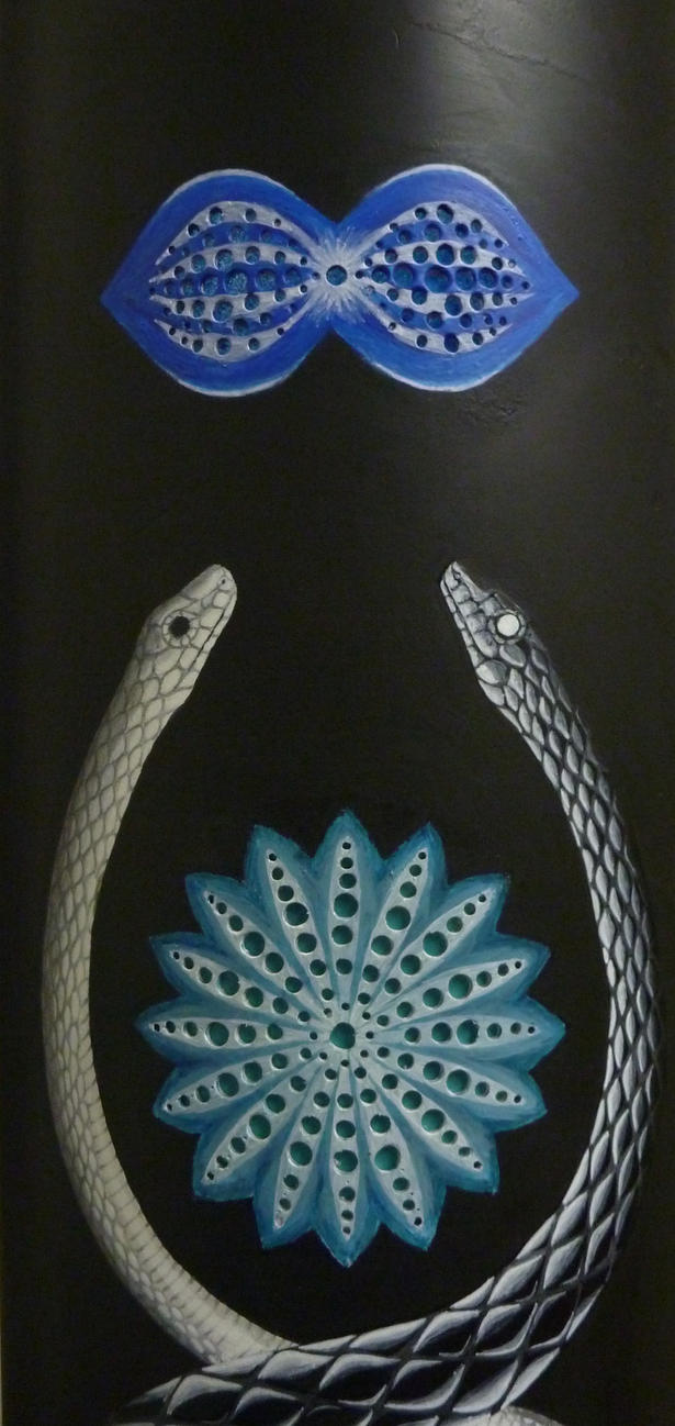 Details  : Transcendance of the snakes by SantoS1409