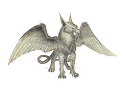 Gryphon in Pencil